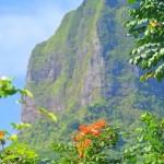 Moorea moorea Tahiti FrenchPolynesia baydreamer