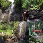 Hiking in FatuHiva hiking marquesas jungle waterfall frenchpolynesia explore adventurehellip